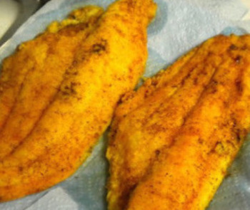 pan fried gluten free catfish