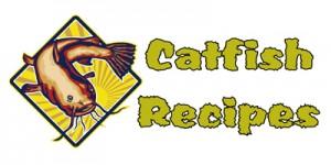Recipes For Catfish